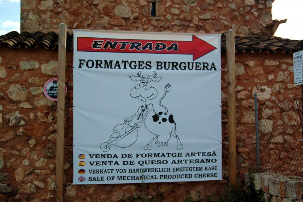 A la fàbrica de Campos podeu veure les vaques i també comprar formatge