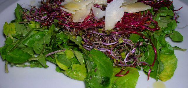 Amanida de canonges i germinats