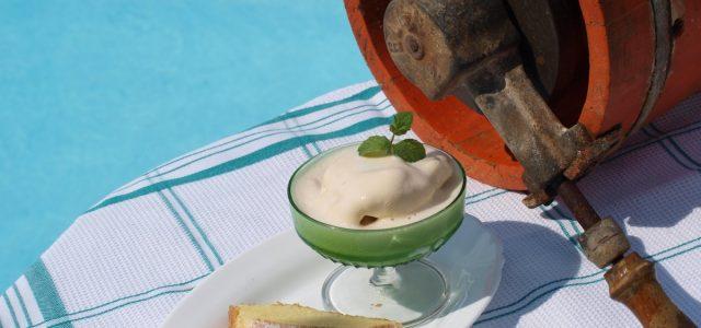 Gelat de vainilla fet amb soja i apte per celíacs