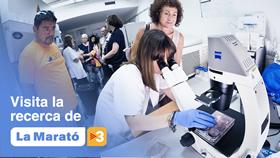 Marató de TV3 2019