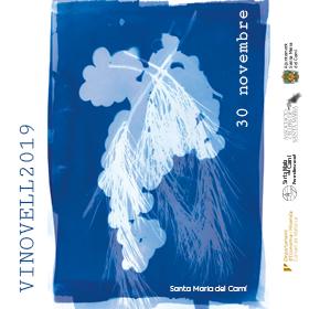 Fira Vi Novell Santa Maria 2019